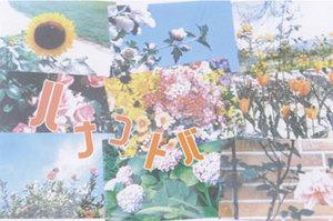 hanakotoba1.jpg